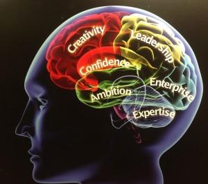cerveau illuminé